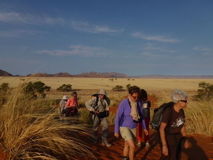 Image Les incontournables de Namibie