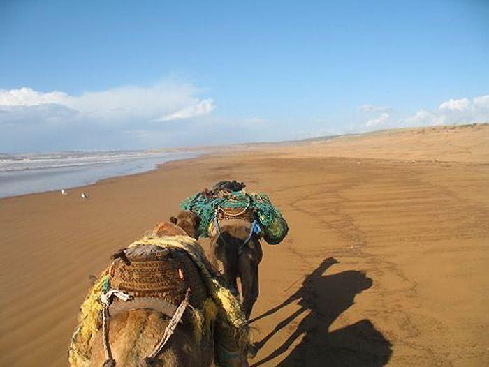 Image Ascension du Toubkal et randonnée chamelière à Essaouira