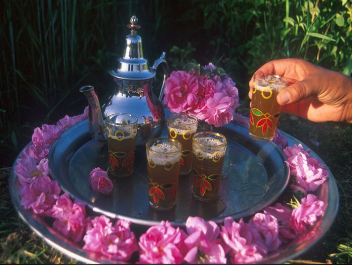 Image Vallée des roses et kasbahs du Grand Sud