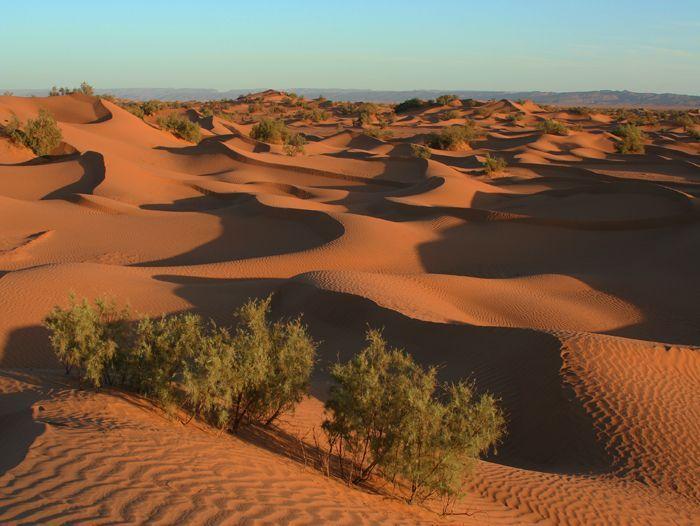Image Le désert en campements traditionnels de charme