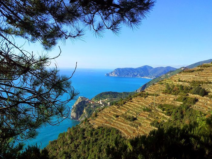 Image Randonnée Cinque Terre et golfe des poètes