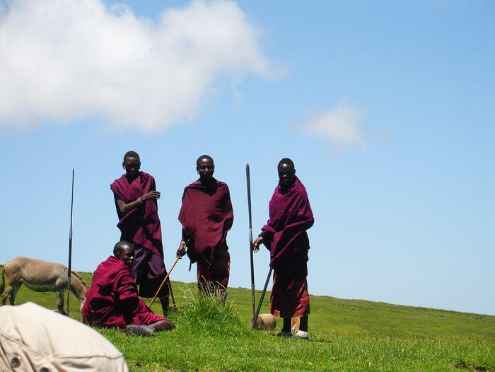 Image Safari en Tanzanie, les plus beaux parcs animaliers