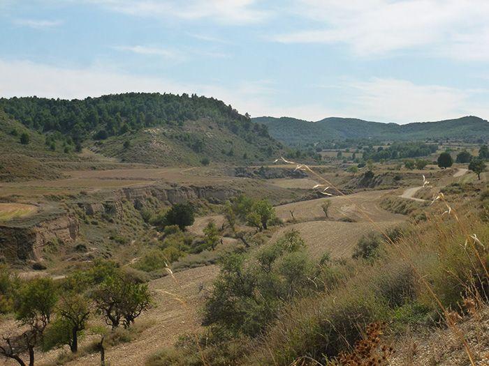 Image Bardenas et Monegros, déserts espagnols