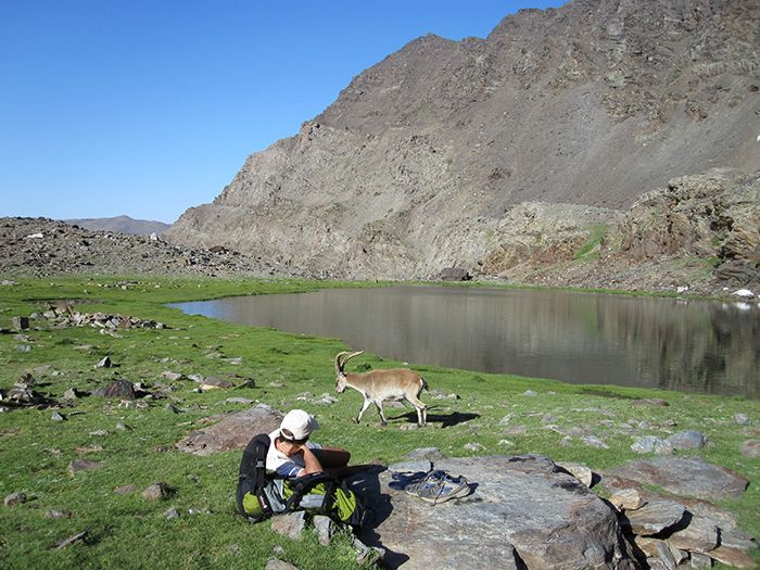 Image Grenade, villages blancs des Alpujarras et ascension du Mulhacen (3479 m)