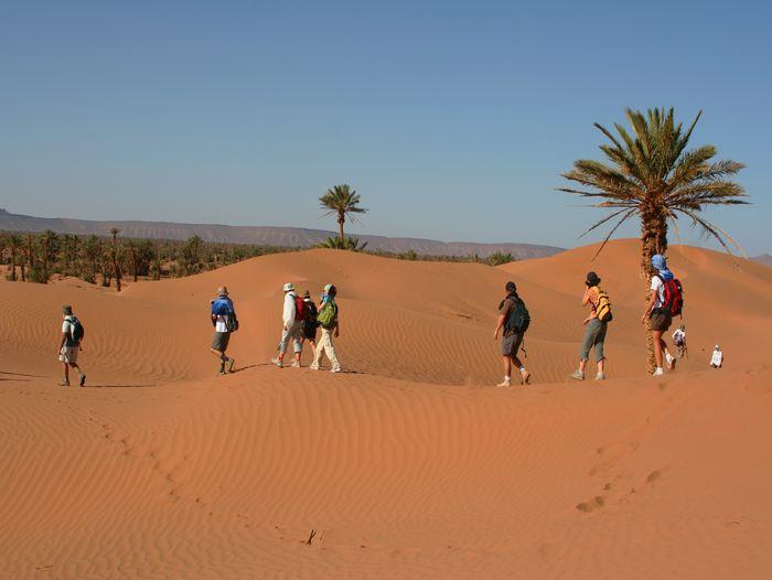 Image Vallée des roses et vallée du Draa, les incontournables du grand sud marocain