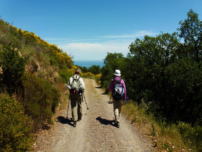 Image Randonnée Collioure Cadaqués en liberté