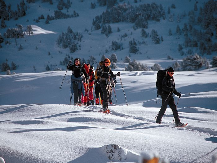 Voyage à la neige : Traversée de la Haute Forêt Noire