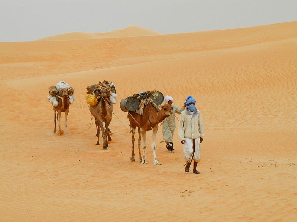 Voyage à pied : Ouadane, Chinguetti, Terjit... la traversée saharienne