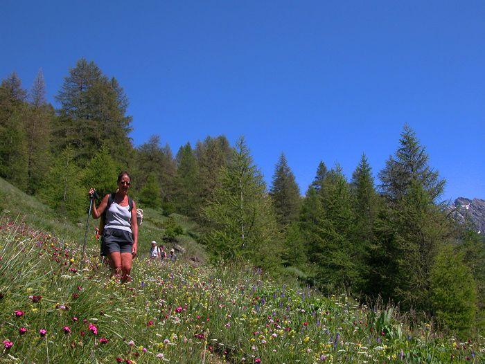 Voyage à pied : Alpes du Nord : Tour du Queyras en gîtes
