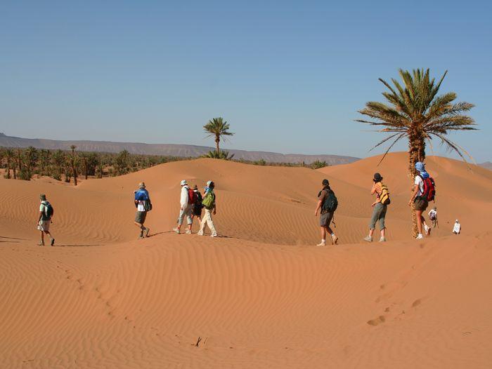 Voyage à pied : Randonnée chamelière et oasis de la vallée du Draa