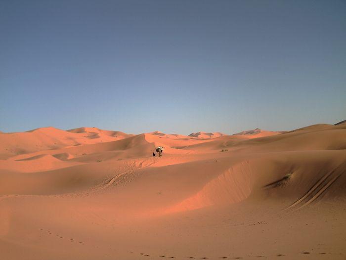 Voyage à pied : Les dunes rouges de Merzouga